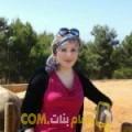 أنا جليلة من مصر 34 سنة مطلق(ة) و أبحث عن رجال ل الدردشة
