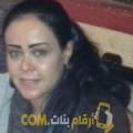 أنا ناريمان من الكويت 39 سنة مطلق(ة) و أبحث عن رجال ل المتعة