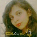أنا دنيا من فلسطين 24 سنة عازب(ة) و أبحث عن رجال ل الصداقة